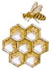 école d'apiculture REVON asbl